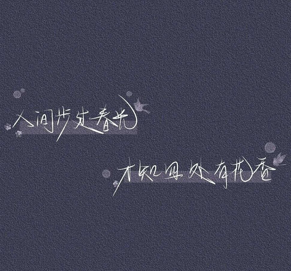 黄昏飞鸟唯美句子 那些迷人的唯美句子 第三张