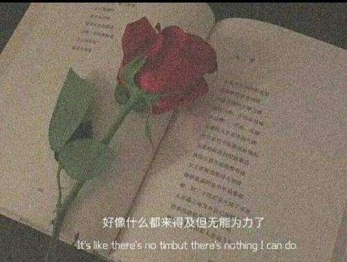 佛缘禅语100条 佛心道义 第三张