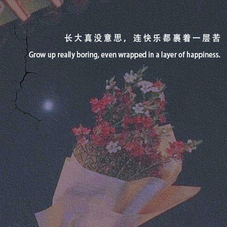 英语唯美句子作文 每个人都有一个世界,安静而孤独