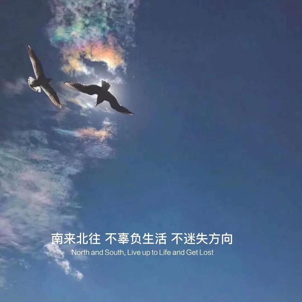 两人不投缘的禅语 忘记是一种风度,舍得是一种境界 第三张