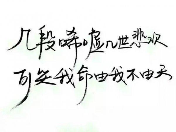 写人生感悟的句子 第三张