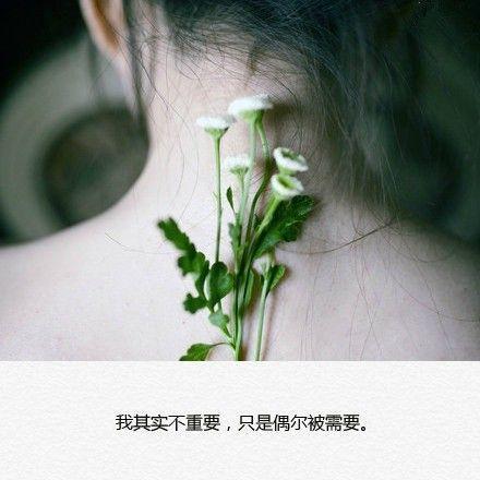 禅语与诗捂的范文 佛言禅 第三张