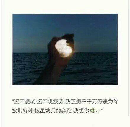 静的禅语经典句子 佛性禅心_6 第四张