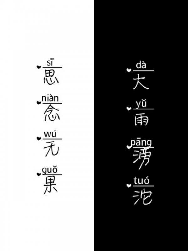 莲花禅语唯美说说 第一张