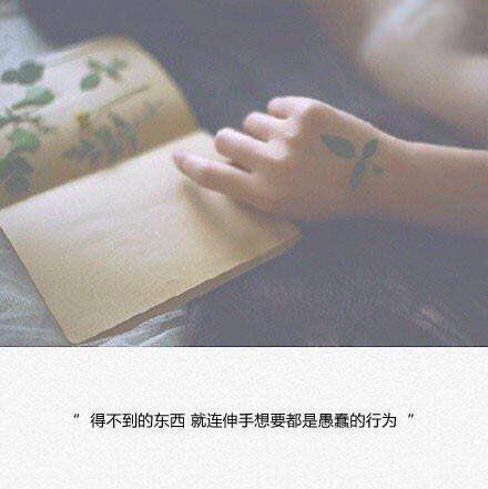 含花月坐看的禅语 让人大彻大悟 开解人的佛经名句 第三张