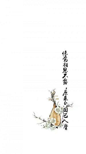 莲花禅语唯美说说 佛家大悟句子 第二张