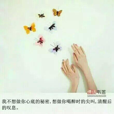 灵山禅语技能视频 佛语禅心200句 第三张