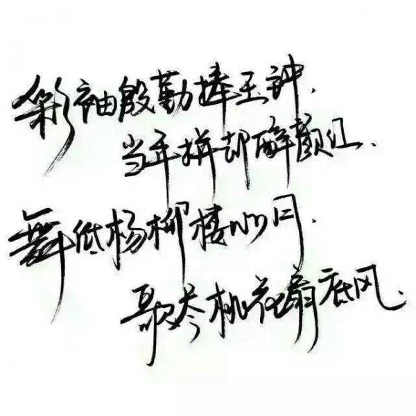 看到幸福快乐禅语 佛家对今天的感悟语句 第三张