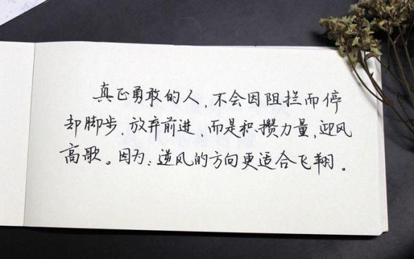 非人学园金禅语音 佛说舍得的经典句子心灵禅语 第四张