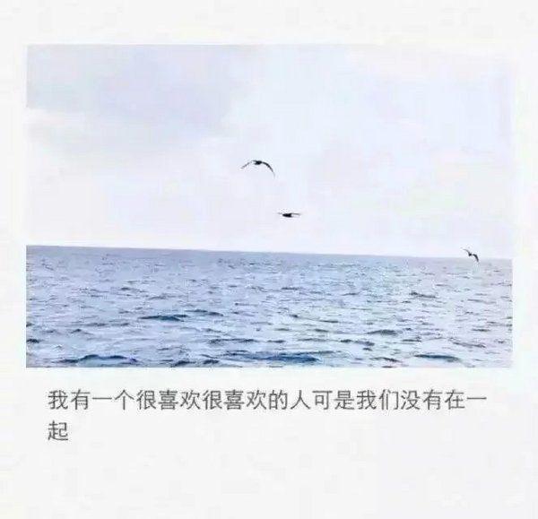 江湖禅语老板是谁 佛句早安句子 第二张