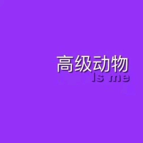 春节感悟人生的句子_生活哲理句子