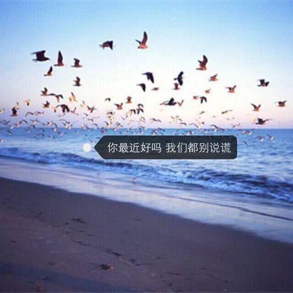 人生感悟的句子祝福语 第四张