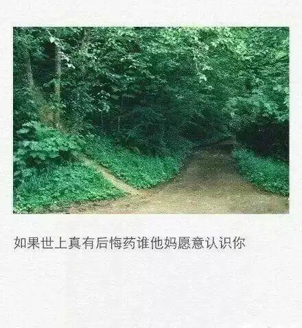 芒果台的禅语动画 佛语录经典短句 第二张