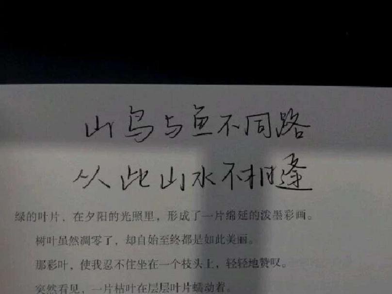 12个经典句子 感悟人生_中华网