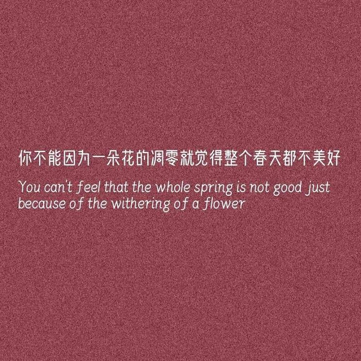 灵山禅语有什么用 佛语人生经典阅读 第五张
