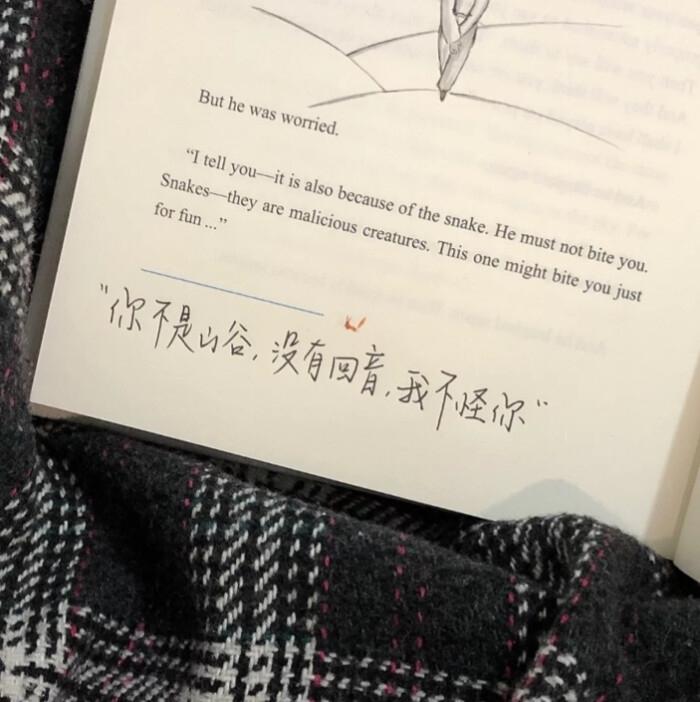 佛家悼念逝者禅语 大安法师语录50句 第三张