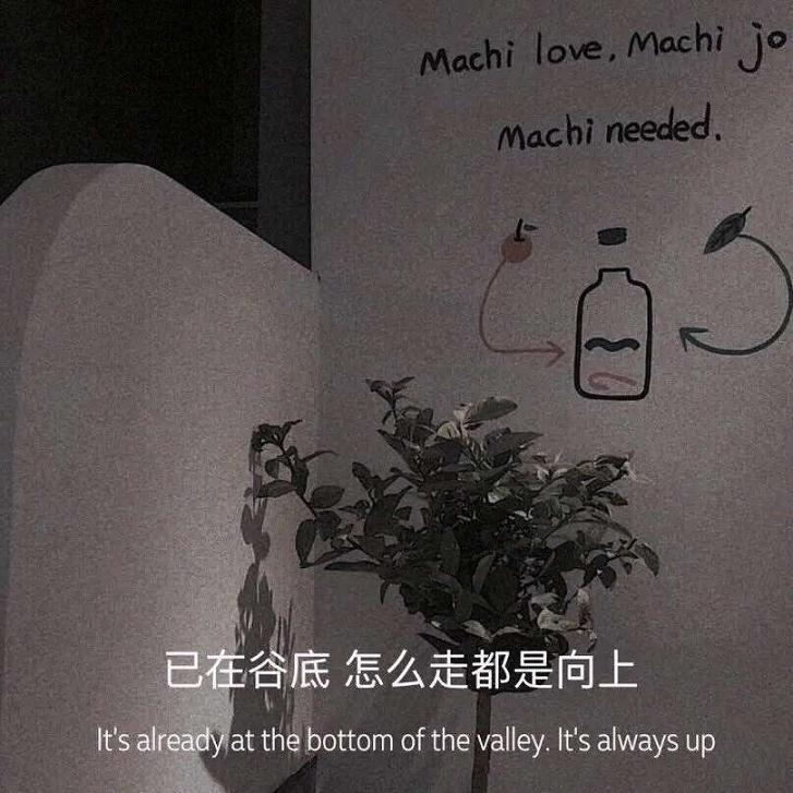 佛家禅语感悟爱情 佛语人生的句子 第二张