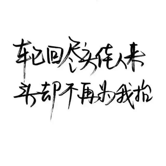 飞驰人生感悟的句子_人到暮年经典句子