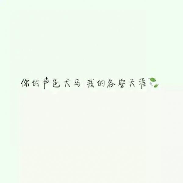佛家关于竹的禅语 佛曰静心禅语_2 第五张