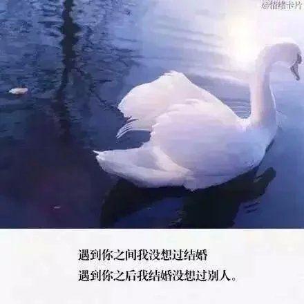 佛心禅语在线阅读 古人处世箴言 第五张