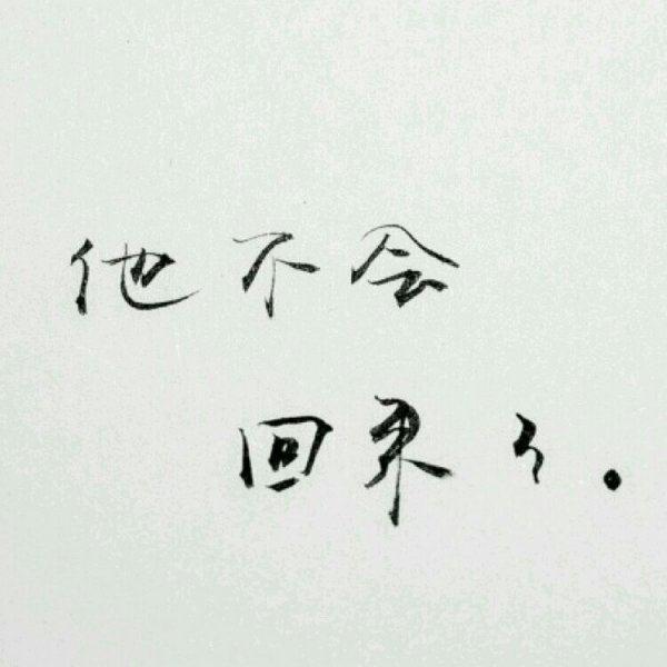 佛家禅语帮助他人 净化人心的佛理短句 第四张