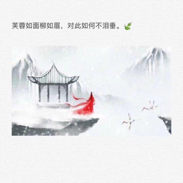 国学禅语诗词网名 佛家经典禅语静心 第二张
