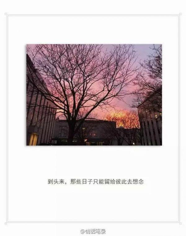 佛教关于欲望禅语 一日一禅经典图片_3 第三张