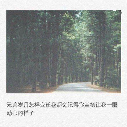 佛家禅语节日祝福 一品佛语【2】 第四张