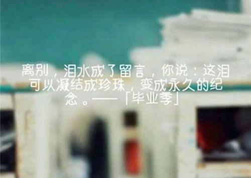 佛教关于欲望禅语 一日一禅经典图片_3 第五张