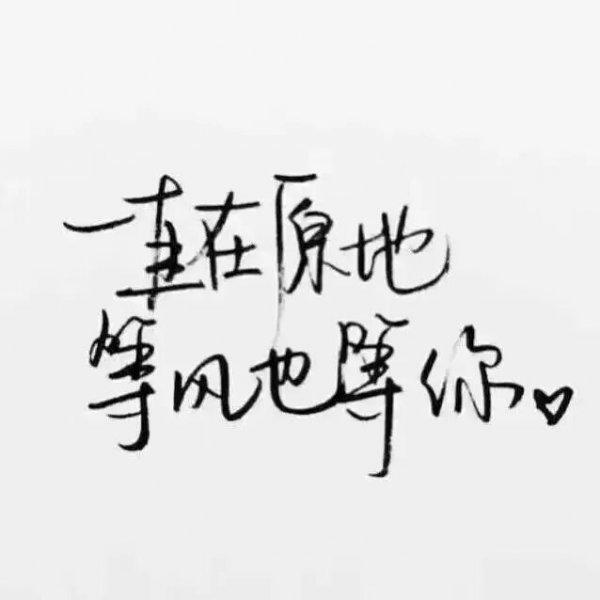 禅语瑜伽视频教程 佛家经典禅语语录句子 第四张