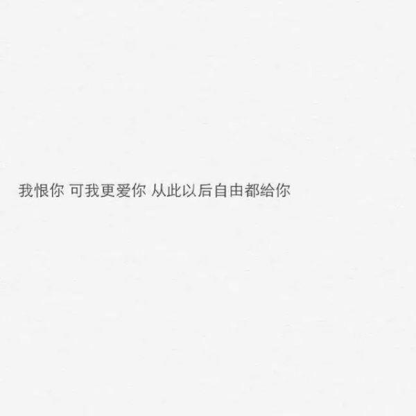 佛心禅语古筝大全 一日一禅语录集锦 第五张